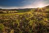 Il tramonto di ieri (Danilo Agnaioli) Tags: collinedelperugino umbria italia canon6d samyang14mm tramonto sole colline cielo primavera