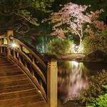 Bridge over calm water thumbnail