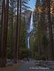 Yosemite Falls (PhotoDG) Tags: yosemitefalls yosemite yosemitenationalpark landscape waterfall water upperyosemitefall middlecascades loweryosemitefall yosemitevalley