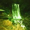 Waterfall (aprilpo) Tags: travel dianamini crossprocessing xpro lomography japan kyushu asia waterfall lomographyxpro200 kirishima nature analog etoc e2c 丸尾滝 霧島 九州 日本