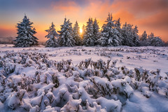 end of a beautiful winter day (Alexander Lauterbach Photography) Tags: germany deutschland winter snow ice sonset sonnenuntergang kahlerasten winterberg nordrheinwestfalen mountain orange sony a7rii
