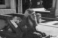 Cementerio de Torrero (noemíconesa) Tags: cementeriodetorrero antiguo tumbas estatuas esculturas viejo zaragoza ancient tombs statues sculptures old