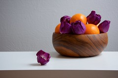Tulips and Oranges (The Good Brat) Tags: stilllife tulips oranges bowl wood wooden grey gray table simple minimal negativespace purple orange white