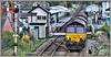 Selwyn on the move! (david.hayes77) Tags: 6m86 freight steel shed dbcargo 2017 gobowen shropshire salop signalbox tsbg levelcrossing semaphore 66093 selwynthesheep ews
