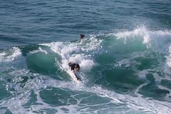 2018.03.18.08.31.05-Tobias-004 (www.davidmolloyphotography.com) Tags: bodysurf bodysurfer bodysurfing surf beach surfing surfer tamarama