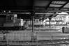 Under One Roof (BravoDelta1999) Tags: newjerseytransit njtransit njt railroad delawarelackawannaandwestern dlw railway lackawanna hoboken terminal station newjersey emd gp40ph2 4101 gp40ph2b 4202 4209