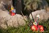 _DSC6284 (Adriano Clari) Tags: aggiungi tag minifigure toy giocattoli personaggio adriano clari giocattolo cavalieri knights