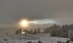 Misty Sunrise (intrepidscotland) Tags: ruskie rusky sunrise snow foreground dusted trees mist