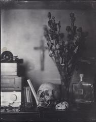 memento mori (Giorgio Bordin) Tags: altprocesses salted paper wet plate collodion negative