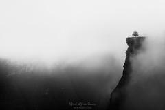 Delika Canyon (Mimadeo) Tags: fog dark mountain mystery cliff darkness tree scenic landscape wilderness mist misty shadow black spooky mood rain rainy mysterious foggy cold valley sharp dramatic blackandwhite santiago saltodelnervion montedesantiago