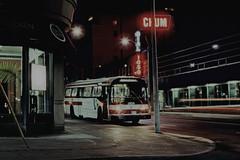 TTC GM New Look Fishbowl Bus Night.  Neon Sign (bishop71701) Tags: ttc toronto gm new look bus yongestreet fishbowl night