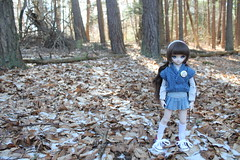 In the woods. (Ninotpetrificat) Tags: doll dollfiedream dollfie mdd ddh10 dollclothes denim cute kawaii puppe punto knitting handmade hobby hechoamano blue azul muñeca toys asiandoll asiantoys japandoll chapa leaves woods bosque