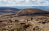 NB-82.jpg (neil.bulman) Tags: kinder countryside landscape peakdistrict nature nationalpark derbyshire beauty hills edale hopevalley nationaltrust hayfield england unitedkingdom gb