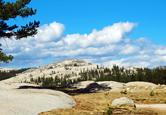 The Top of Yosemite, CA 2017 (inkknife_2000 (9 million views)) Tags: easternsierranevadas yosemitenationalpark california usa landscapes mountains dgrahamphoto tuolumnemeadows panorama granite forest skyandclouds rocks boulders