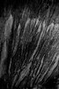 Bromo volcano, Indonesia (pas le matin) Tags: texture volcan volcano travel voyage crater cratère sand sable rock rocher nb bw noiretblanc blackandwhite monochrome bromo indonésie indonesia canon 7d canon7d canoneos7d eos7d