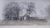Foggy cabin (jesserepo) Tags: foggy cabin mist winter frozensea ominous scary spooky mysterious mystery abandoned isolated trees unkept wild woodcabin finland helsinki grass fog gray muted bleak barren horror architecture house gableroof