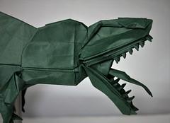 Origami Giganotosaurus 5 (Tankoda) Tags: origami paper art giganotosaurus carolinii late cretaceous travis nolan shuki nature study 24 teeth 70 cm biotope forest green indoors dinosaurs mesozoic tongue theropod carnivore 16 hours kato