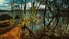 Ponds like a mirror  😃 (Ostseeleuchte) Tags: spiegelteiche malente dieksee diekseepromenade holm spiegelungen ostholstein norddeutschland northerngermany landschaft frühling spring water wasserlake bluesky sunshine