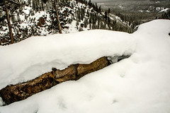 Yellowstone NP Trip - Day 6 (44) (tommaync) Tags: yellowstonenationalpark yellowstonenp yellowstone np nationalpark park national wyoming february 2018 nikon d7500 winter gibonsfalls gibonsriver snow ice