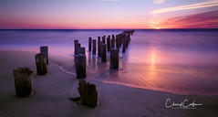 Old Pier Pilings (TTL with Cheryl) Tags: landscape landscapephotography ocean beach naples florida natureimage naturephotography sunset longexposure longexposurephotography naplesflorida oldpierpilings pier pilings pierpilings calm serene serenity cherylcallenphotography