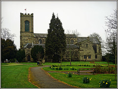 St.Augustine of Canterbury, Rugeley (Jason 87030) Tags: church canterbury rugeley staffs staffordshire work april 2018 daffs daffodils flowers yard shot weather dull yellow architecture building worship holy listed grade uk england unitedkingdom greatbritain europe scene construction history historic visit
