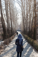 Park-e Jamshidiyeh (chrissomos) Tags: 2018 iran travel park tehran stone winter