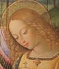 Pinturicchio o Pintoricchio (Bernardino di Betto Betti 1452-1513) - Madonna della Pace (1495 circa) - Mostra Raffaello e l'eco del Mito - GAMeC Bergamo (raffaele pagani) Tags: mostraraffaelloelecodelmito exhibitionraffaelloandtheechoofthemyth gamecbergamo galleriadartemodernaecontemporanea modernandcontemporaryartgallery bergamo raffaellosanzio giovannisanti pinturicchio bernardinodibettobetti pedroberruguete lucasignorelli dipinti paintings museo museum