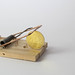 Golden Bitcoin caught in mouse trap