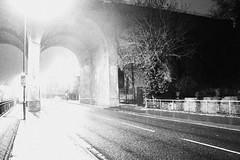 Cray Valley B+W (doojohn701) Tags: crayvalley architecture blackandwhite glare tree shadow bridge viaduct wet streetlighting uk
