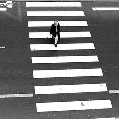 On the strips (pascalcolin1) Tags: paris13 femme woman photoderue streetview urbanarte noiretblanc blackandwhite photopascalcolin 50mm canon50mm bandes strips crosswalk carré square