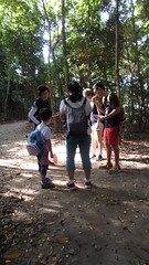 Chek Jawa boardwalk tour with the Naked Hermit Crabs (wildsingapore) Tags: chekjawa pulau ubin guiding people singapore marine intertidal shore seashore marinelife nature wildlife underwater wildsingapore island plant durian tree malvaceae durio zibethinus
