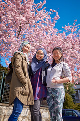 Hanami 2 (haz_fenrir15) Tags: sakura cherry blossom czech republic spring sky pink portrait group canon 6d sigma 35mm art