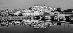 Reflections (Raphael Lenzi) Tags: coimbra reflection mirror river portugal blackandwhite
