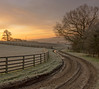 (S Marwood) Tags: sunrise sky landscape grass frost morning tree lane fence field yorkshire canon700d cold track sun