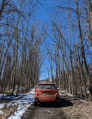 Chuck In the Woods (jennacunniff) Tags: subaru crosstrek woods 2018 love car chuck offroad wild