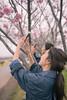 Young sisters taking pictures of cherry blossoms (Apricot Cafe) Tags: img84035 asia asianandindianethnicities healthylifestyle japan japaneseethnicity japaneseculture tamronsp35mmf18divcusdmodelf012 candid carefree casualclothing charming cheerful cherryblossom cherryblossomshanami chibaprefecture colorimage crossprocessed enjoyment handraised happiness leisureactivity lifestyles onlyjapanese outdoors people photography realpeople riverside sister smartphonephotographing smiling springtime sustainablelifestyle tourim tourism tourist traveldestinations twopeople weekendactivities women youngadult sakurashi chibaken jp