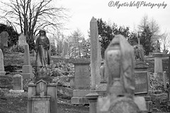 Don't fear the reaper (MysticWolfPhotography) Tags: cemetery blackandwhite monochrome graves grave angel gothic