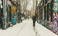 Graffiti Alley - Snow (Katherine Ridgley) Tags: toronto rushlane alley graffiti graffitialley city downtown urban streetphotography streetart street art artspace tag tagging tagged person figure human man walk walking trail path footprint footprints stock stockphotography season seasonal winter cold snow slush lane building buildings paint spraypaint graffitiart 6 the6 the6ix six thesix falling fallingsnow weather