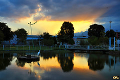 Sunset in the park (Otacílio Rodrigues) Tags: água céu ponte lago pond pôrdosol sunset nuvens clouds reflexos reflections poste lamppost grades grids árvores trees antenas antennas chafariz fountain parque park resende brasil oro garça heron ave bird