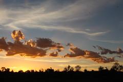 African Sunset (Rckr88) Tags: african sunset africansunset wolwespruitnaturereserve northwestprovince southafrica wolwespruit nature reserve north west province south africa clouds cloud cloudysky cloudy sky skies sun sunlight naturalworld outdoors travel travelling