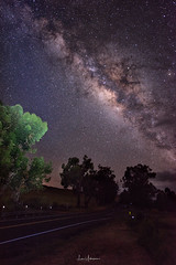 Milky Way Via Old Saddle Road (JUNEAU BISCUITS) Tags: milkyway longexposure nikon nikond810 saddleroad kamuela northkohala hawaii bigisland nightphotography hawaiiphotographer