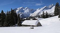 Un inverno da ricordare (_Nick Outdoor Photography_) Tags: img85554096960 sanbernardino suisse switzerland hiking beauty sunnyday winterhiking happiness