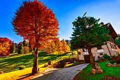 Sunshine day (Marco Trovò) Tags: marcotrovò hdr italia italy colere bergamo passopresolana mountain montagna panorama scenery