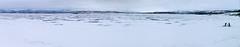Fishing on Tornetrask