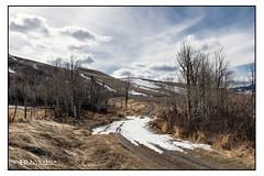 Spring Road (Bruce Walter) Tags: exploremerritt beautifulbc spring aspen snow dirtroad getoutside getoutandplay