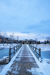 cold tones of winter (almostsummersky) Tags: wood path epicsystemscorporation winter brick buildings cloudcover verona clouds pond blue learningcampus wisconsin workplace bridge snow epic landscaping campus cold