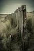 The last post (James Waghorn) Tags: dunes sand nikon winter greatstone fence splittone d7100 kent sigma1750f28exdcoshsm sea england mood post