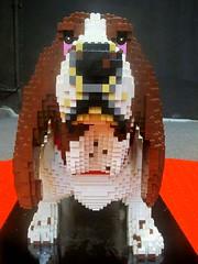 Lego pet 3 (http://oba-k3.wixsite.com/davidsalguero) Tags: pet perro dog lego juguete toys minifigures blocks bricks bloques ladrillos escultura sculpture kids fichas