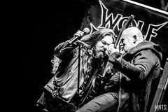 Wolf Spider - live in Metalmania XXIV fot. Łukasz MNTS Miętka-8