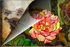 Rose for my love (PaulO Classic. ©) Tags: deepdream picmonkey canon eos450d rose gimp tas